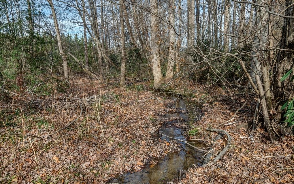 12 Flat Creek Ln, Andrews, NC 28901