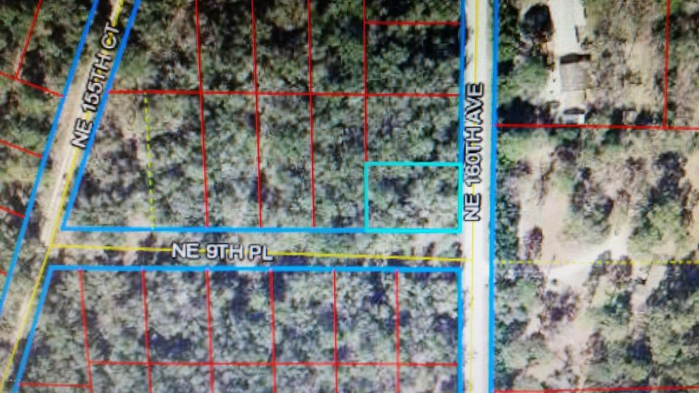 Ne 160 Ave Williston FL 32696 Land For Sale and Real Estate