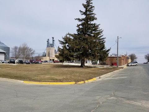 Center Ave S, Hayfield, MN 55940