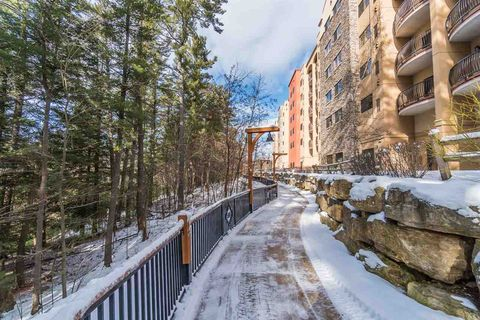 Photo of 2411 River Rd Unit 2351, Wisconsin Dells, WI 53965