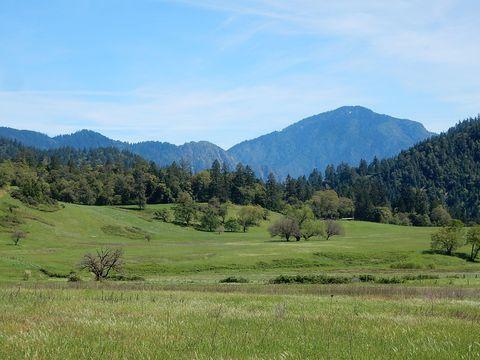 Photo of 160 Cherry Tree Ln, Salyer, CA 95563
