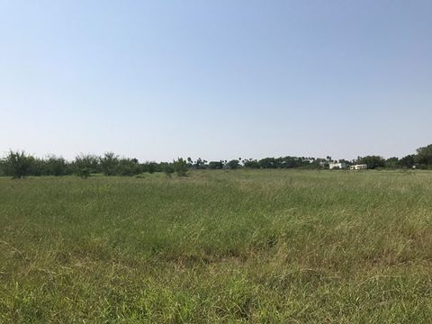 State Highway 495 Donna TX 78537