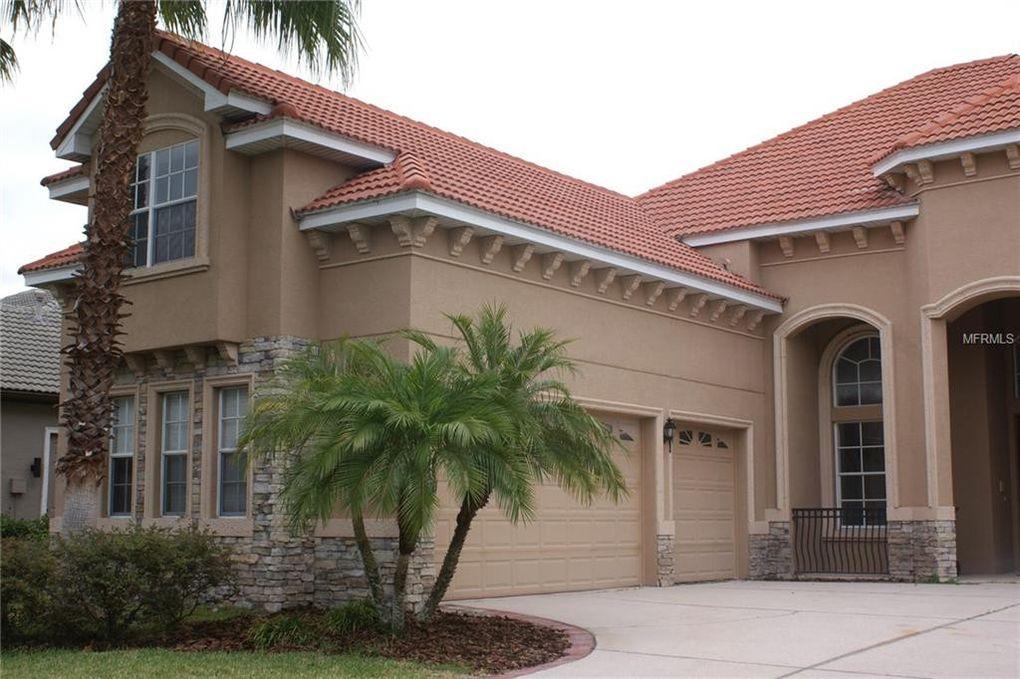 20115 Shady Hill Ln, Tampa, FL 33647