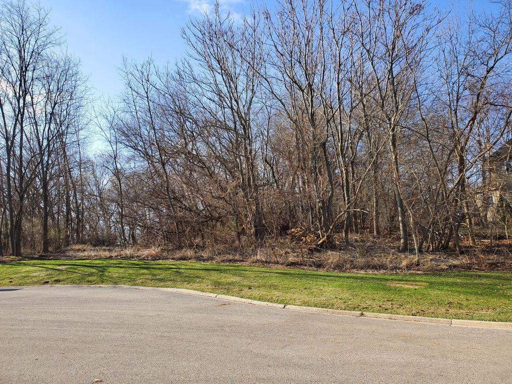 16149 Scenic Ct Lot 43 Wadsworth, IL 60083