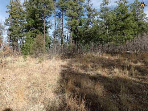 Tr 10-d Lower Canyon Rd, Gallinas, NM 87731