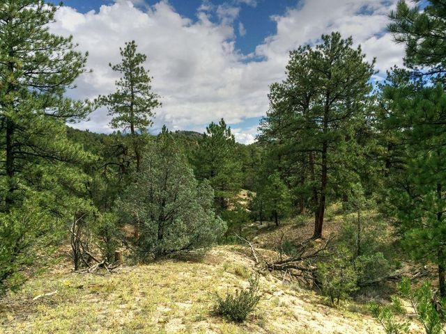 319 ridge rd cotopaxi co 81223 land for sale and real