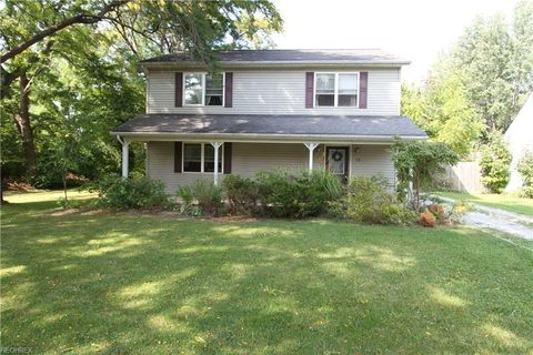 428 Singer Ave, Painesville, OH 44077