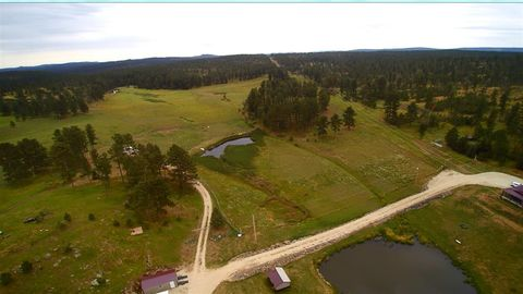 21648 Hay Creek Pl, Nemo, SD 57759