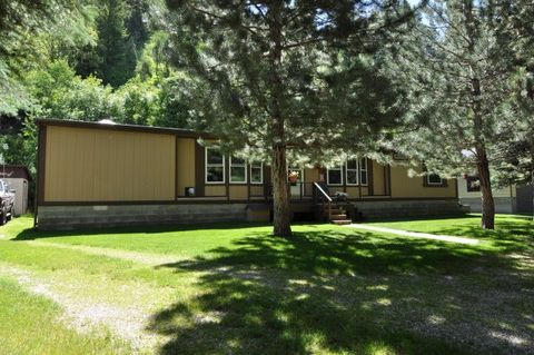 366 Park Ln, Irwin, ID 83428