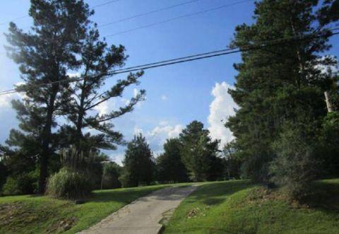 Photo of 828 Lee Road 147, Opelika, AL 36804