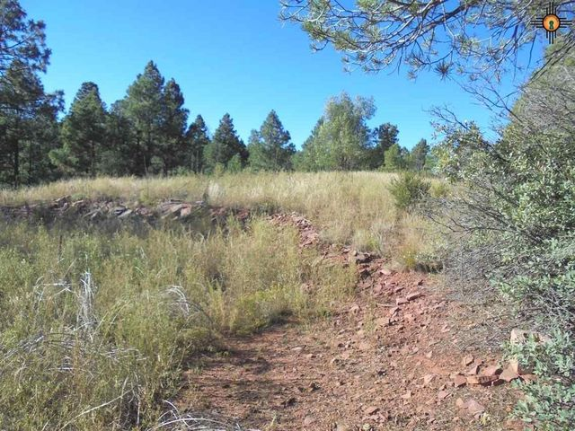 5 55 acres on roadrunner rd las vegas nm 87701 land for sale and real estate listing