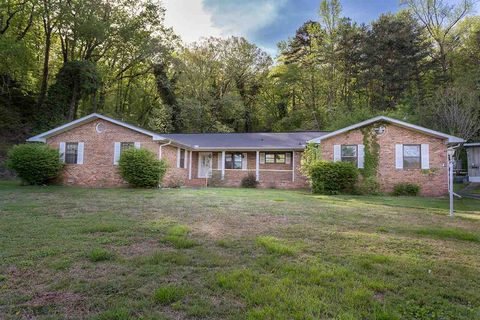 Photo of 4111 Mountain Creek Rd, Chattanooga, TN 37415