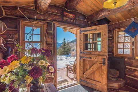 Photo of 105 Hidden Bear Ranch Rd, Sawpit, CO 81435
