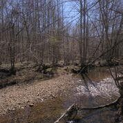 Photo of Teal Hollow Rd, Kelso, TN 37348