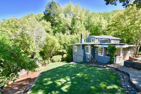 Photo of 441 W Live Oak Dr, Mill Valley, CA 94941