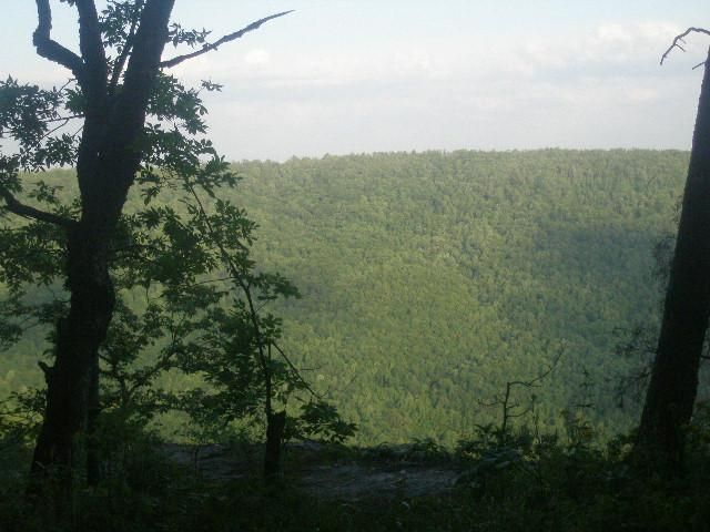 beersheba springs Explore the most popular trails near beersheba springs, tennessee with hand-curated trail maps and driving directions as well as detailed reviews and photos from hikers, campers and nature.