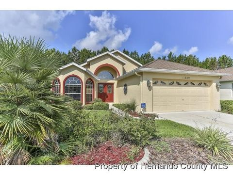 11600 New Haven Dr, Spring Hill, FL 34609
