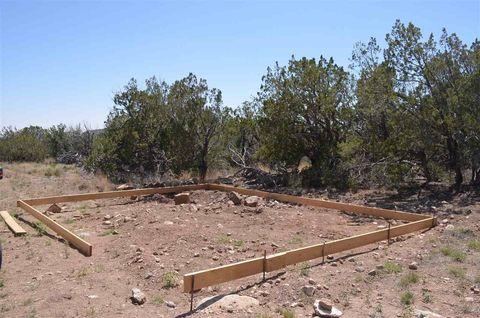 211 Sue Layne Unit Pasture8, Sunspot, NM 88349