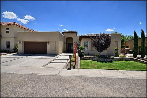 119 Father Luis Catano Sunland Park NM 88063