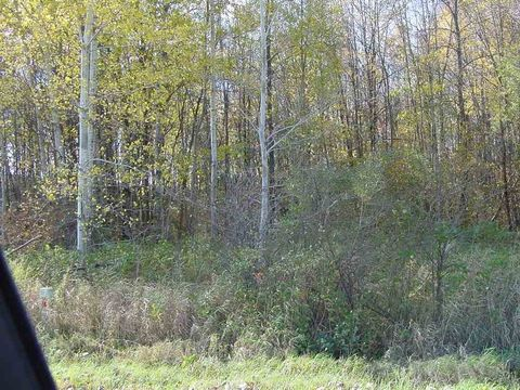 Photo of Fairground Ave, Withee, WI 54498