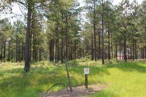 Deer Run Trl Lot 29 Perry GA 31008