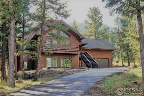 Estes Park CO Homes With Special Features