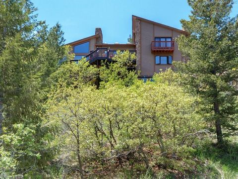 8755 Ute Rd, Cascade, CO 80809