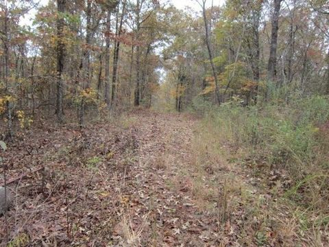 Wildcat Rd, Buchanan, GA 30113