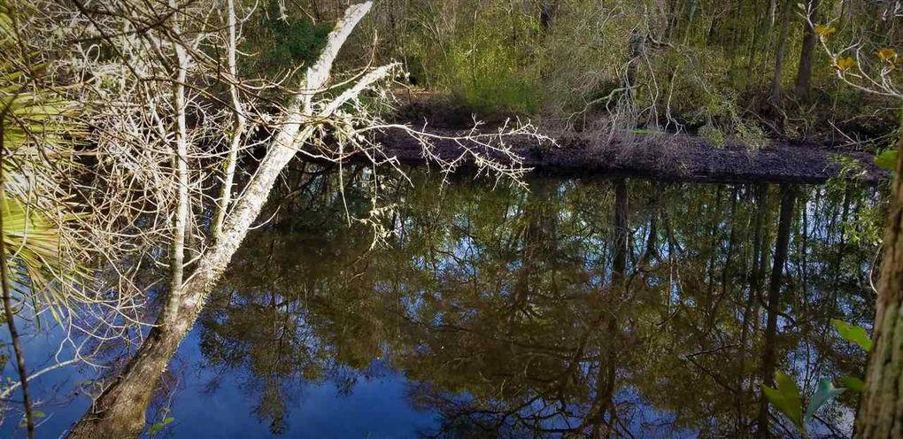 Vacant Seminole Ln Sopchoppy, FL 32358