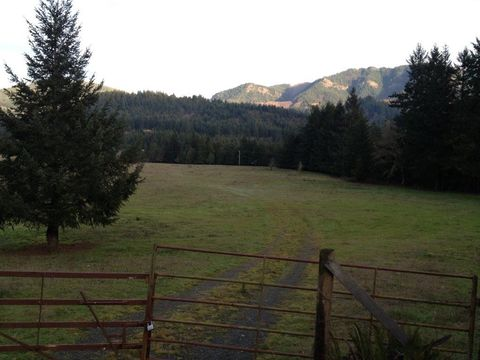 Johnson Mountain Rd, Powers, OR 97466