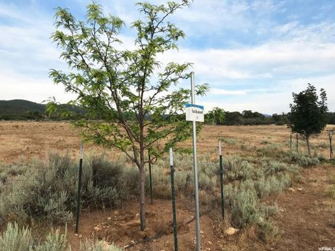 23050 N 12018 E Lot 1, Fairview, UT 84629