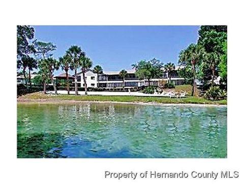 6593 River Run Blvd, Weeki Wachee, FL 34607