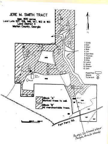 1705 Fort Perry Rd Box Springs GA 31801