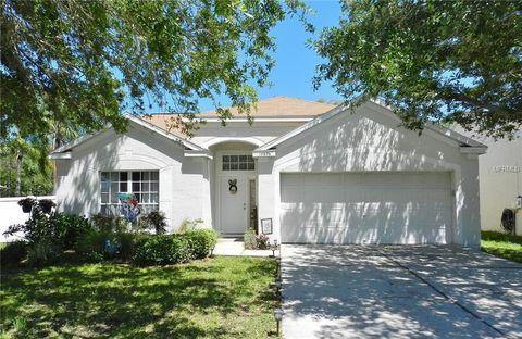 Photo of 10606 Walker Vista Dr, Riverview, FL 33578