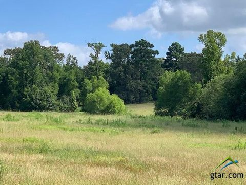 East Texas Ctr, TX Land for Sale & Real Estate - realtor com®