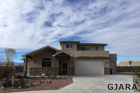 822 Cabernet Ct, Palisade, CO 81526