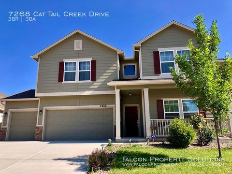 Photo of 7268 Cat Tail Creek Dr, Colorado Springs, CO 80923