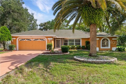 Photo of 11464 Palomar St, Spring Hill, FL 34609