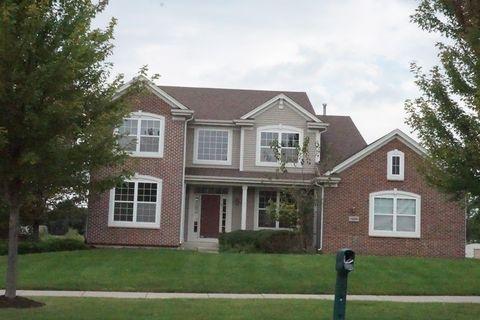 13006 Meadow Ln, Plainfield, IL 60585