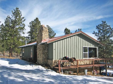 34120 Surrey Ln, Buena Vista, CO 81211
