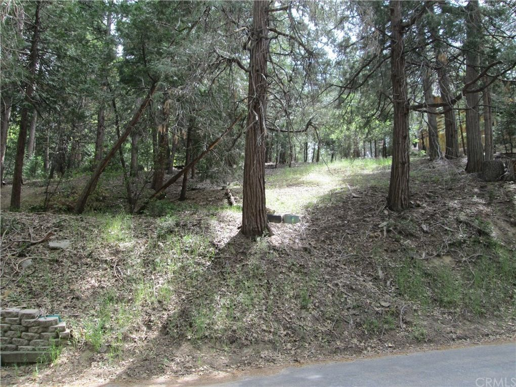 Alder Ter Lake Arrowhead, CA 92321