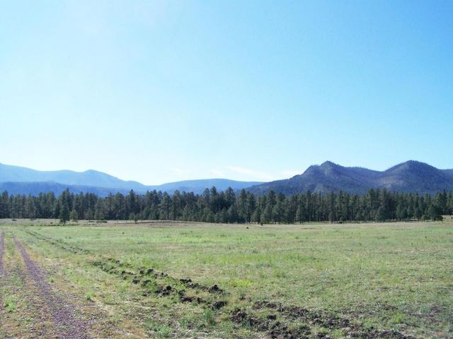 109 county road 2130 nutrioso az 85932 land for sale and real estate listing
