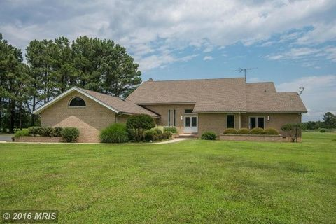 21480 Punch Point Rd, Sherwood, MD 21665