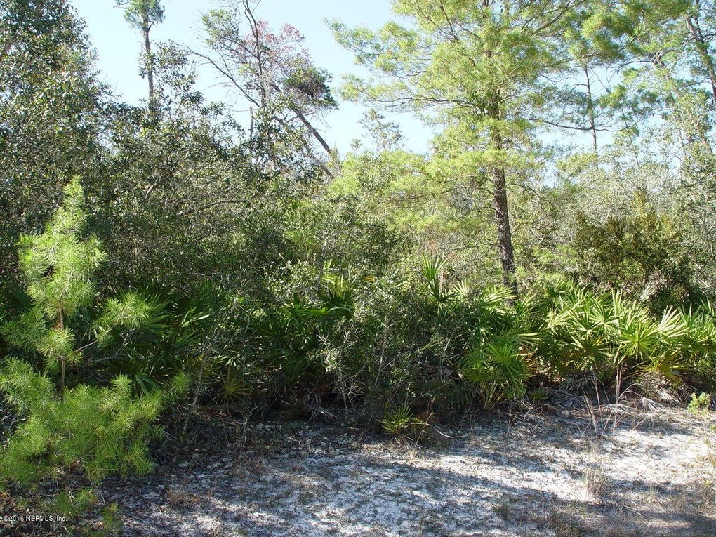 109 sabal palm dr georgetown fl 32139 land for sale
