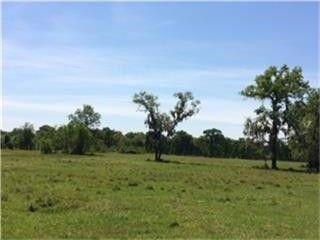 Photo of 1119 Bowler Rd, Waller, TX 77484