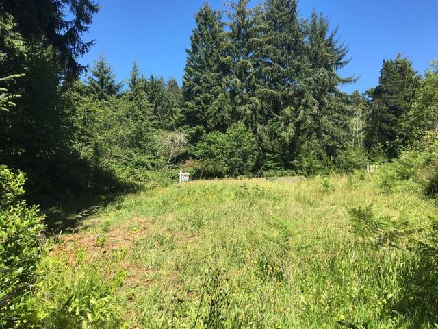 dewolf manzanita or 97130 land for sale and real