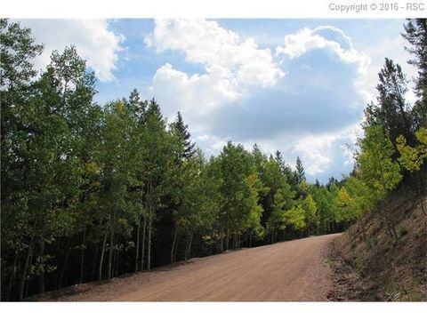493 willow rd divide co 80814 land for sale and real