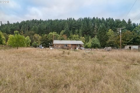 194 E Willis Creek Rd, Winston, OR 97496