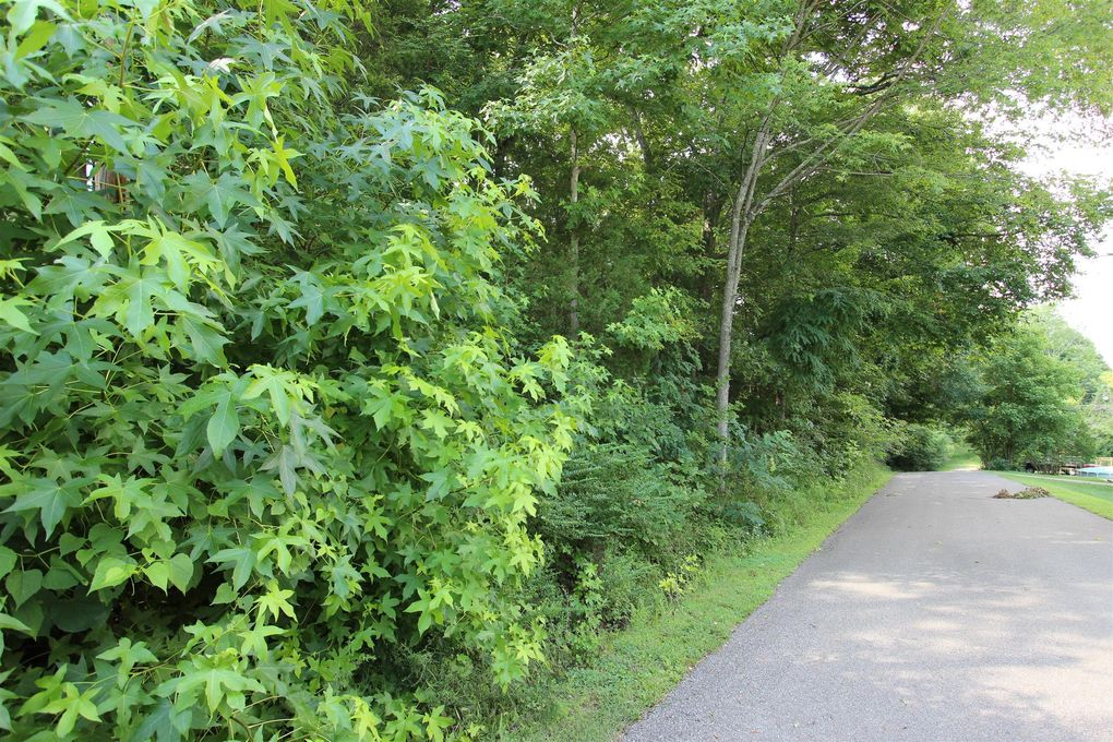 1 Valley View Rd Lot 17 Dover, TN 37058