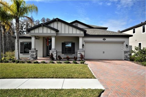 Photo of 18863 Roseate Dr, Lutz, FL 33558